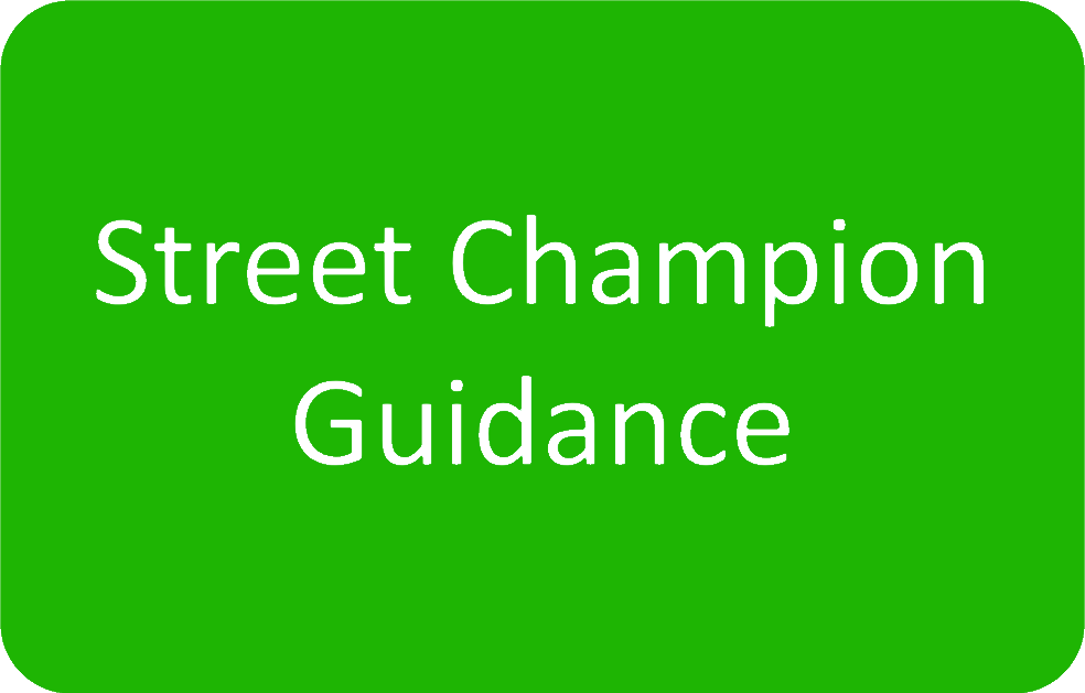 Street Champion Button